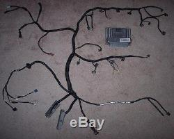 Wiring harness rewire service ls1,6.0,5.7,5.3,4.8, swap with tune
